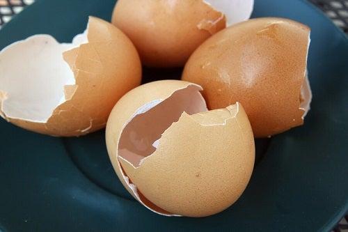 6 întrebuințări ale cojilor de ouă în gospodărie