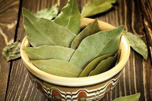 Tratament pentru diabet cu frunze de dafin