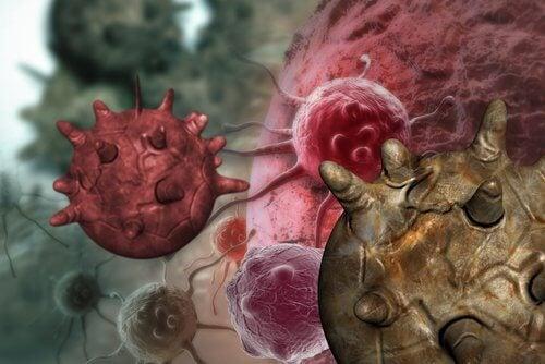 Mitul alimentelor cancerigene