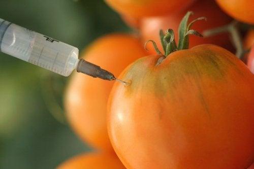Roșii și mitul alimentelor cancerigene