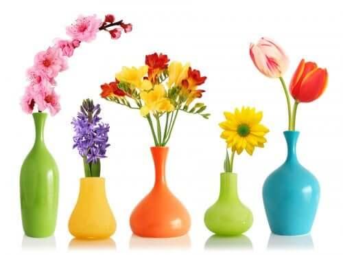 Vaze cu flori colorate