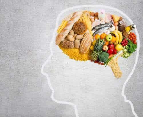 Grăsimi esențiale pentru creier