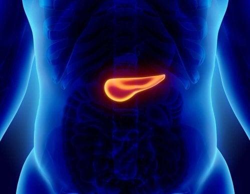 Probleme la pancreas