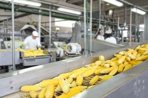Procesarea alimentelor și conținutul nutrițional