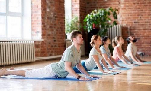 Oameni care practică yoga