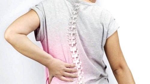 Coloană atacată de afecțiuni care provoacă dureri de spate