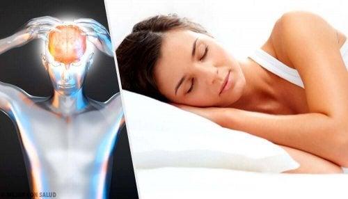 Creier al unei femei în timpul somnului