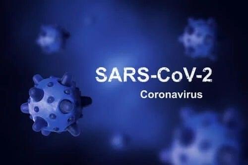 Originea coronavirusului: de ce nu poate fi eradicat?