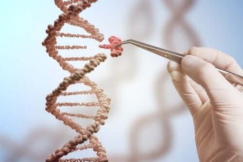 Cercetători studiind o catenă de ADN