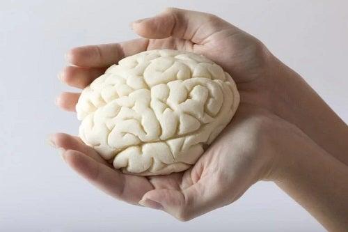 Cercetător care studiază cum afectează coronavirusul creierul