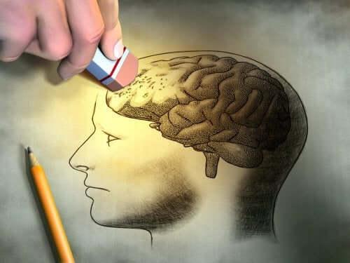 Creier în craniu desenat cu un creion