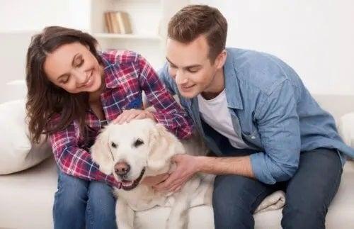 Cuplu care iubește un câine