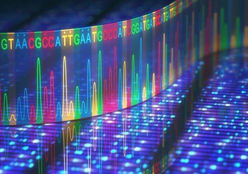 Informații codificate în ADN