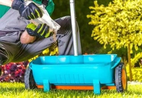 Ingrediente naturale pentru fertilizarea plantelor