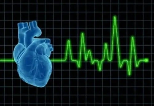 Monitor cardiac și inimă