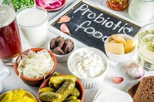 Care este diferența dintre prebiotice și probiotice?