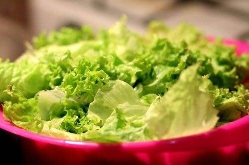 Castron cu salată iceberg