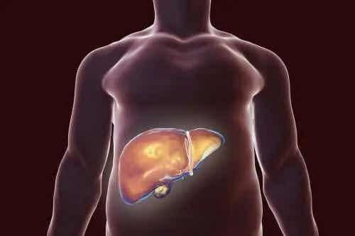 Cea mai bună dietă pentru vezica biliară