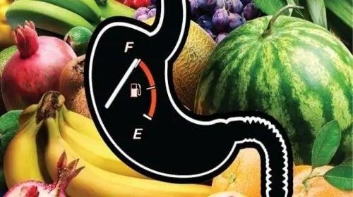 Fructe folosite drept combusytibil pentru organism