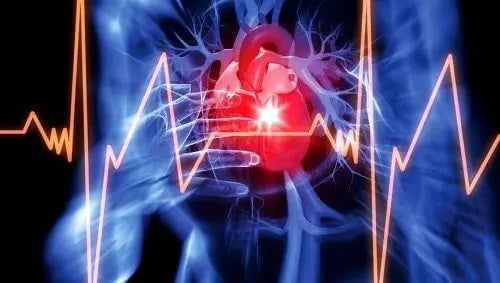 Inimă în corpul uman