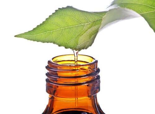 Ce este acidul salicilic natural
