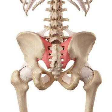 boala articulației sacroiliace