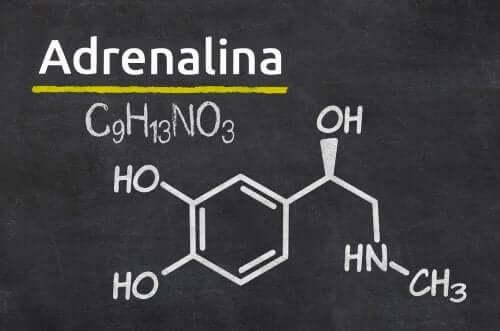 Formula adrenalinei înscrisă pe o tablă