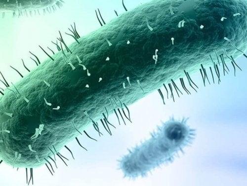 Infecția cu Mycoplasma genitalium