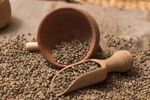 Semințe de cânepă