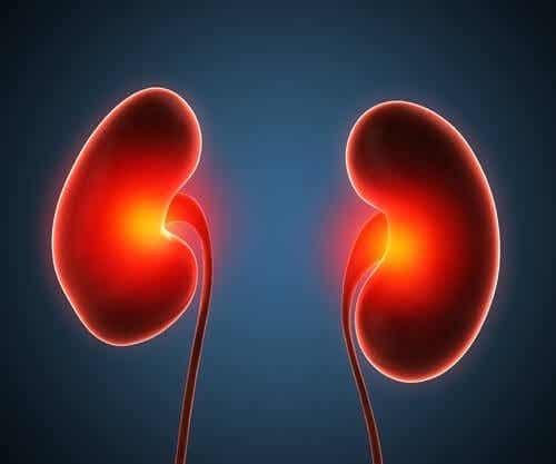 Tratamente pentru abcesul renal