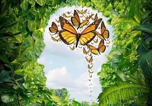 Fluturi galbeni zburând
