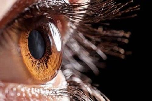 Ochi căprui sănătos