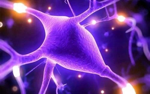Riscurile hipermagnezemiei asupra sistemului nervos