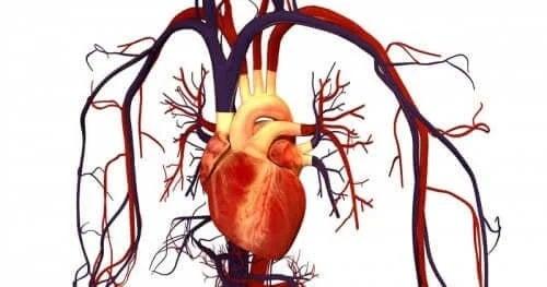 Utilizări ale medicamentului Atorvastatin pentru sănătatea inimii