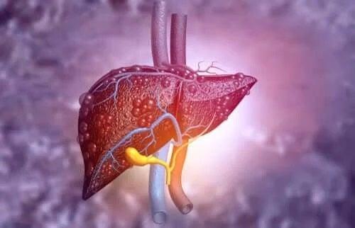 Ficat afectat de bolile hepatice