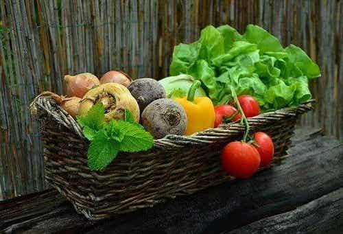 Dieta pentru persoanele cu cancer