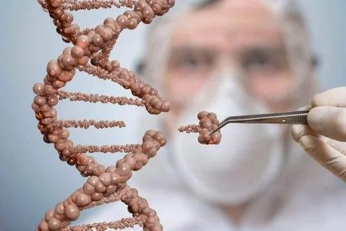 Cercetător care studiază tratamentele cu celule stem