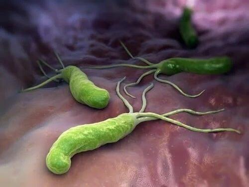 Agenți patogeni care au pătruns în corp