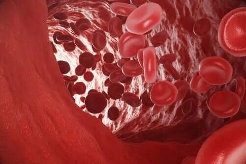 Celule roșii în sânge