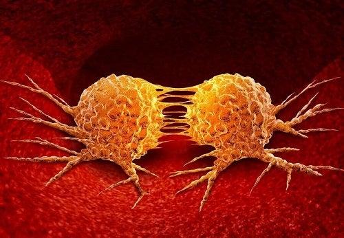 Cum se dezvoltă cancerul în celule