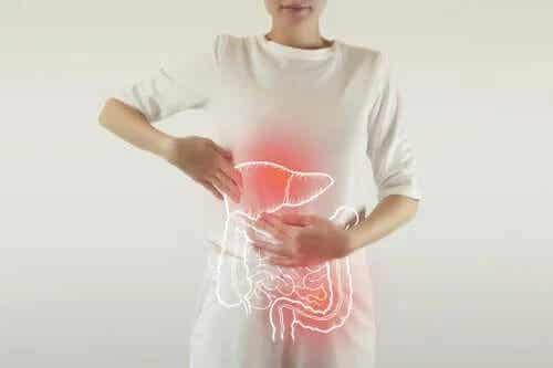 Care este rolul enzimelor digestive?
