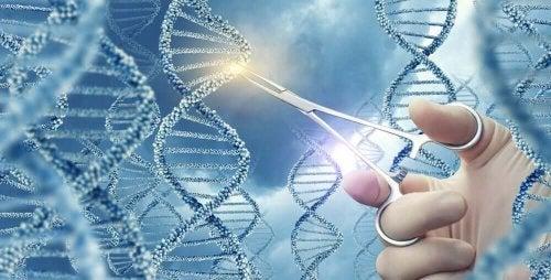 Catenă ADN tăiată cu foarfeca