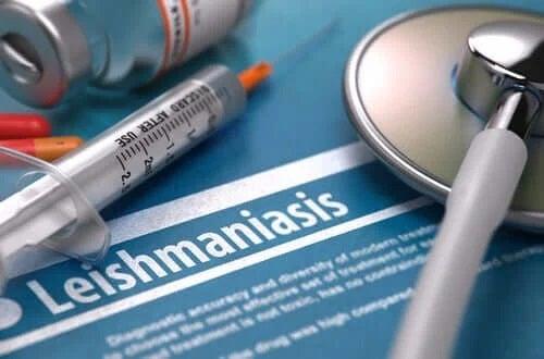 Leishmaniaza este contagioasă?