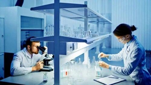 Specialiști care analizează rezultatul unei spermograme