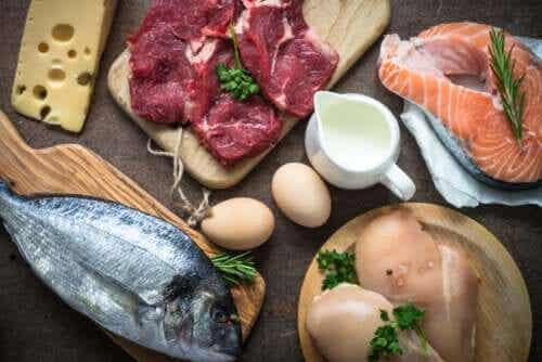 De ce este consumul de proteine atât de important?