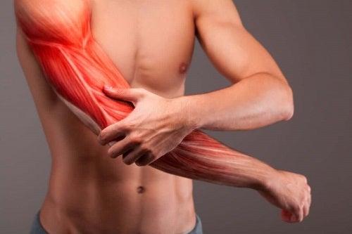 Bărbat cu musculatura dezvoltată
