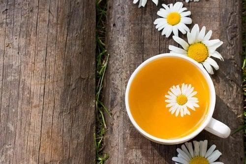 Beneficiile ceaiului de mușețel proaspăt