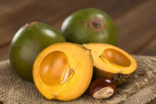 Caracteristicile și beneficiile fructului lucuma