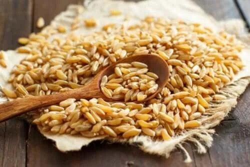 Proprietățile și beneficiile grâului kamut