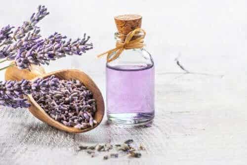 Cele mai eficiente plante medicinale